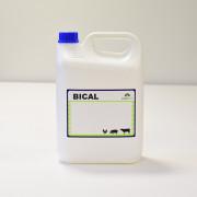 Bical